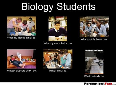 Meme Biology - funny hunger games cake ideas and designs