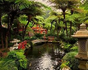 Deco Jardin Japonais : jardin japonais et d co zen en 15 id es d 39 am nagement ~ Premium-room.com Idées de Décoration