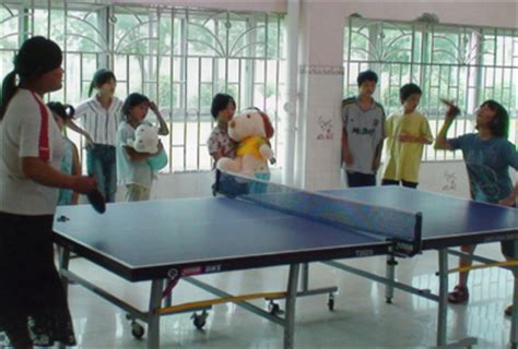 donate ping pong table orphan care annual report 2006 ccai china bulgaria
