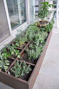 pflanzen auf dem balkon anbauen innenraume und mobel ideen With französischer balkon mit weintrauben anbauen garten