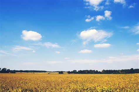 picture nature landscape sky field cloud meadow