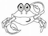 Crab Colored Illustration Coloring Dreamstime Background Illustrations Vectors sketch template
