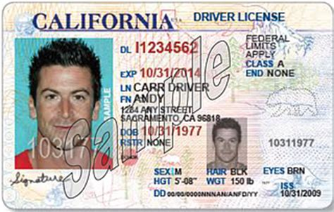 dmv  california licenses meant  increase safety