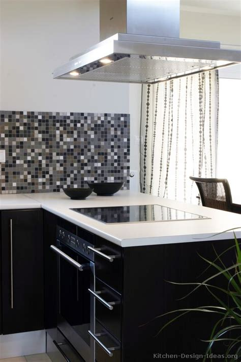pictures  kitchens modern black kitchen cabinets