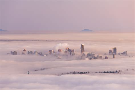beautiful images  cities covered  fog