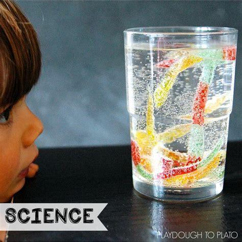 easy preschool science activities grade activities playdough to plato 348