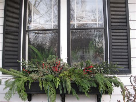 winter window boxes mels green garden