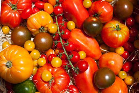 cest de saison la tomate laurent mariotte