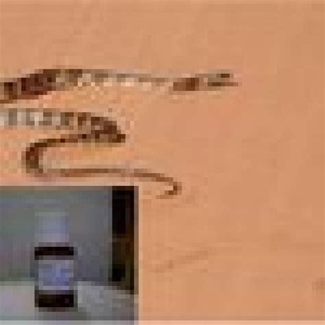 Solim - 1- produto para espantar cobras - Classificados Brasil