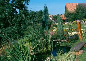 Was Fressen Molche Im Gartenteich : bild schwarzwald gartenteich ferienwohnungen s dterrasse ~ Orissabook.com Haus und Dekorationen