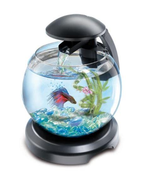 aquarium boule aquariophilie