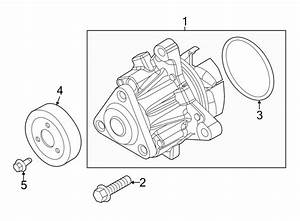2016 Ford Focus Water  Pump  Engine