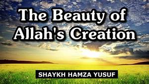 The Beauty Of Allah39s Creation About Islam