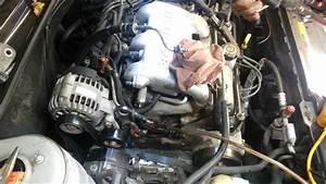 Pontiac Grand Am   Olds Alero 3 4 Liter Powersteering Pump