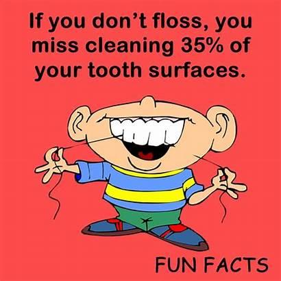 Dental Facts Teeth Dentist Fun Floss Tooth