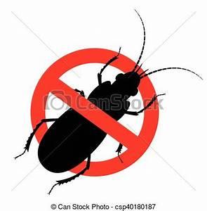 Tuer Les Cafards : comment tuer cafard comment tuer un cafard cockroach vidshaker cafard blatte ou cancrelat d ~ Melissatoandfro.com Idées de Décoration