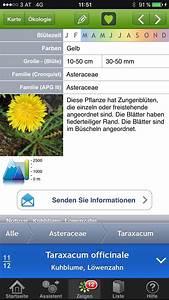 Blumen Erkennen App : die besten naturbestimmungs apps iblumen waldl uferbande ~ A.2002-acura-tl-radio.info Haus und Dekorationen