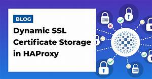Dynamic, Ssl, Certificate, Storage, In, Haproxy