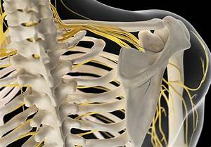 Pain In Right Side Of Neck  9 Causes
