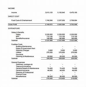 sample projected income statement template 11 free With projected financial statement template