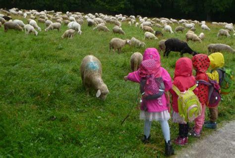 imker englischer garten münchen kindergarten am biederstein naturerlebnis im englischen