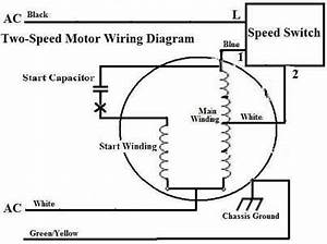 two speed starter wiring diagram wiring diagram and With phase motor wiring diagram phase motor starter diagram