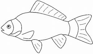 Marine Fish Clipart Fish Coloring Pencil And In Color