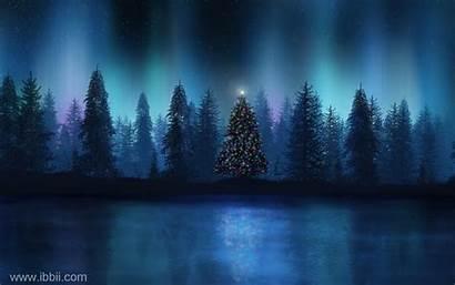 Winter Scene Scenes Christmas Nature Wallpapers Wallpapertag