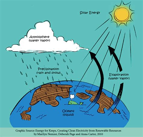 the water cycle fwee