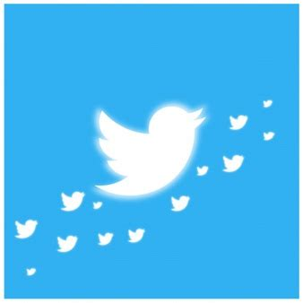 twitter bird vectors photos and psd files free download