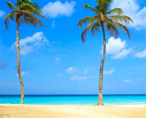 Fondos De Pantalla Apple Fondo De Pantalla Semanal Aruba Caribe En Iphoneros