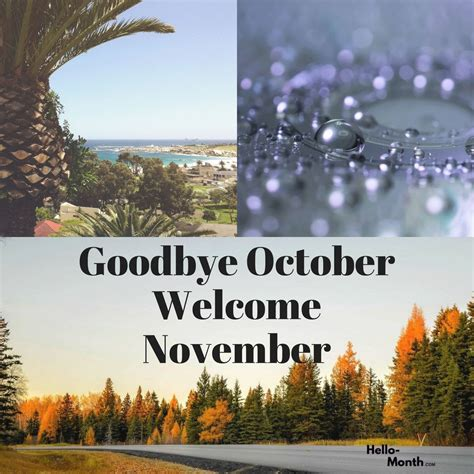 Goodbye October Month And Welcome November | Qualads