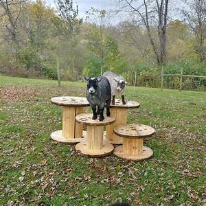 Wire Spindle Goat Climb     Goat Toys    Pygmy Goats