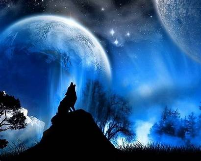 Laptop Wolf Wallpapers Cool Pro