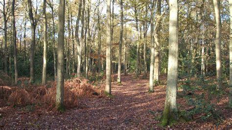 petts wood  hawkwood national trust