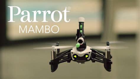 parrot mambo ab  preisvergleich bei idealode