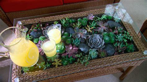 video learn      terrarium coffee table