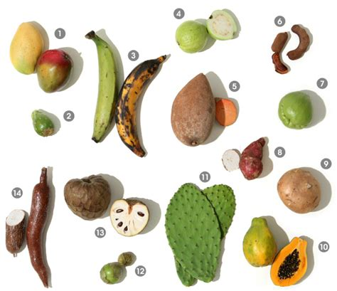 A Visual Guide To Latin American And Caribbean Produce
