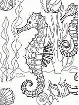 Sea Coloring Pages Under Colouring Drawing sketch template