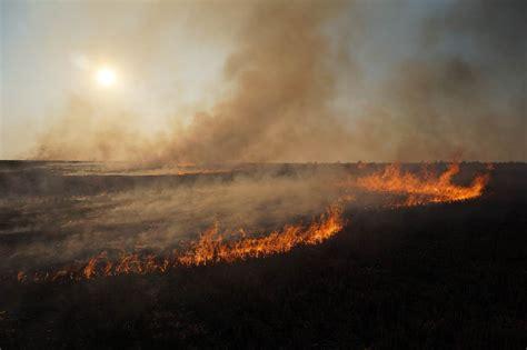 Burning Desire: Watch the Flint Hills Transform Through ...