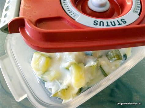 plat cuisiné sous vide conserver ses plats plus longtemps en les mettant sous