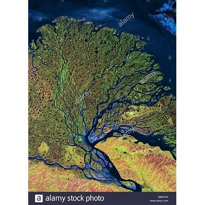 Lena River Delta Seen from Satellite Stock Photo Royalty