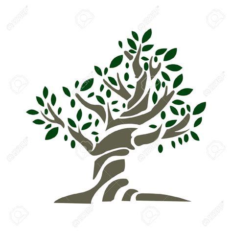albero clipart olivo clipart clipground