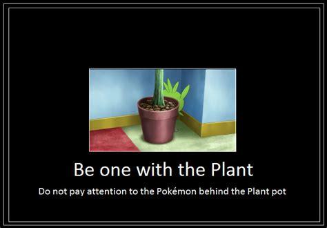 Plant Memes - plant meme by 42dannybob on deviantart
