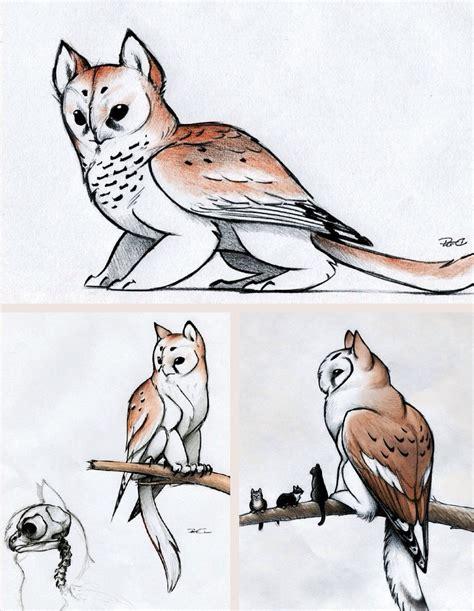 owl griffin    cute edited  kira claypoole