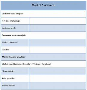 Assessment Template For Market  Example Of Market