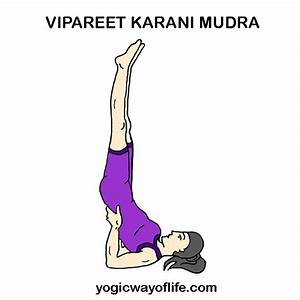 Vipareeta Karani Asana – Inverted Pose | Yogic Way Of Life