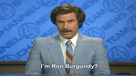 Ron Burgundy Scotch Meme - the best ron burgundy quotes from anchorman in gifs the movie score