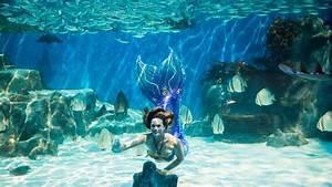 Mermaid Magic  8  Years  - Aqwa