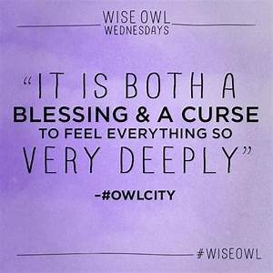 Best 25+ Owl ci... Owl City Inspirational Quotes